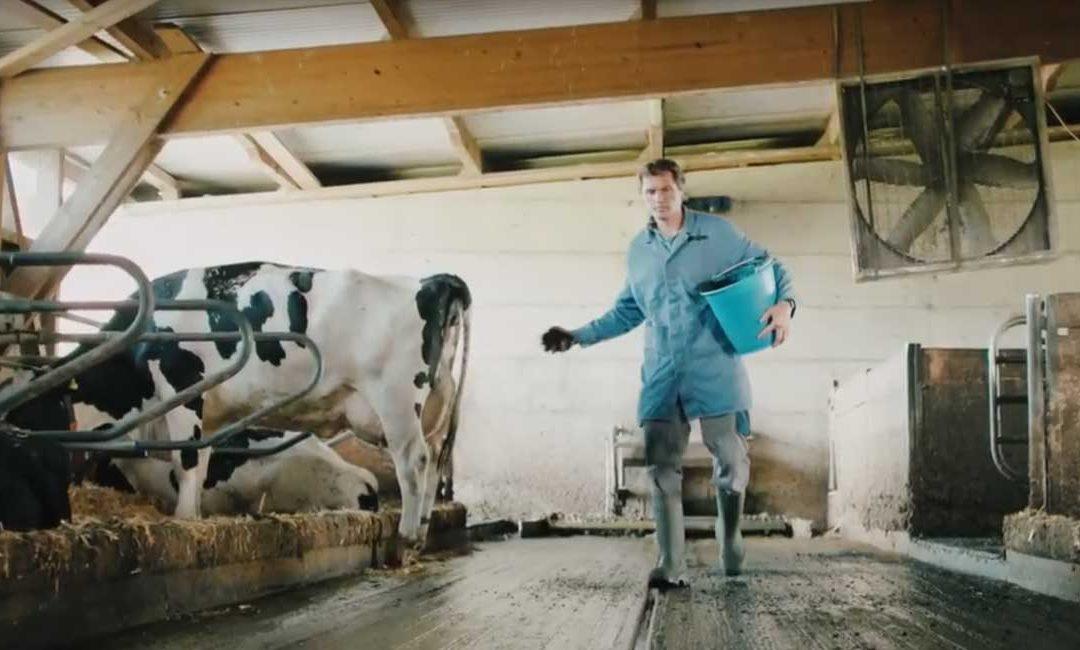 VIDEO: Verora mit Pflanzenkohle-Projekt für Agropreis 2019 nomminiert