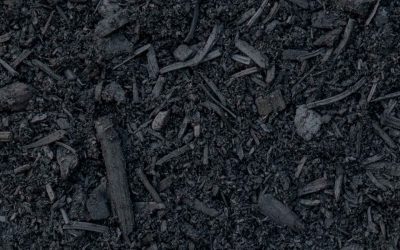 SWEDEN: Climate commis­sion recom­mends use of biochar